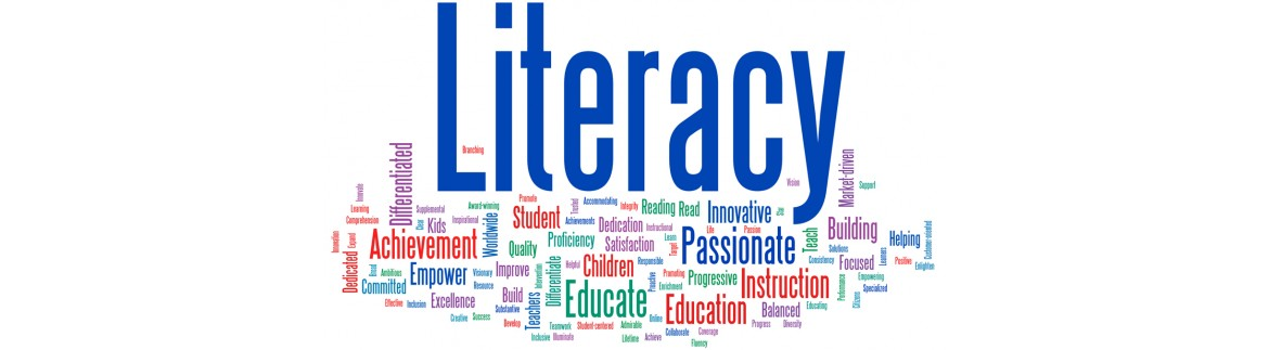 Post Primary Literacy