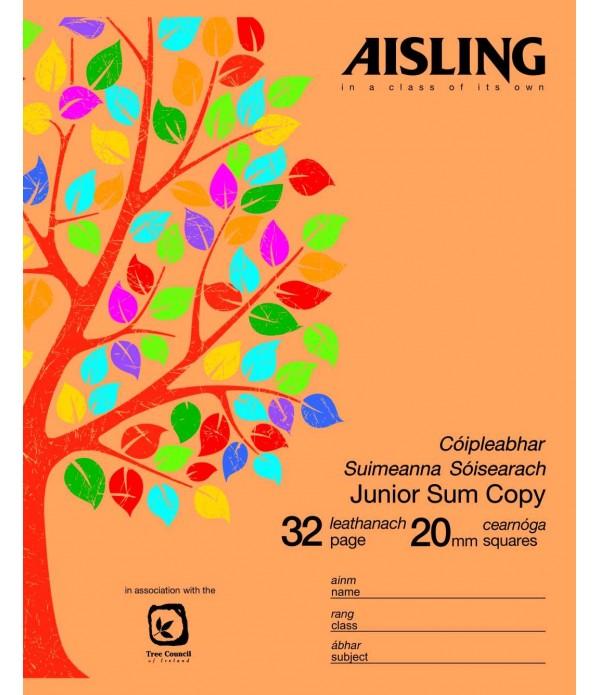 Copybook 20mm Junior Sums