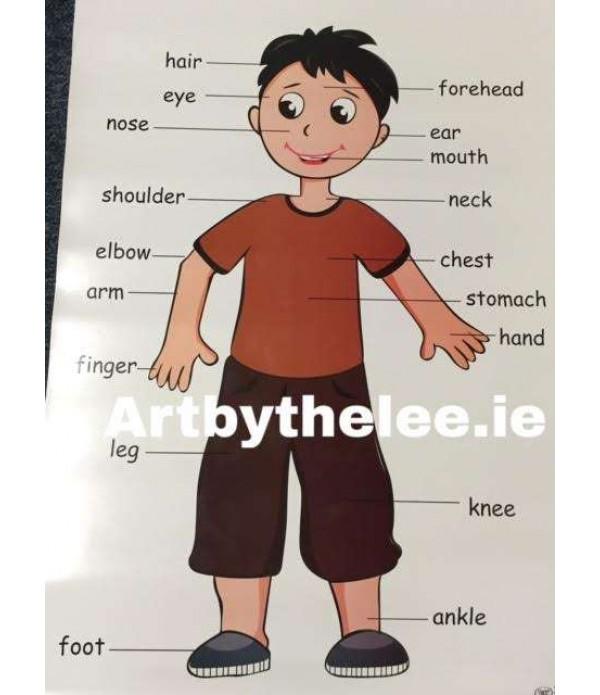 Body Poster(Boy)