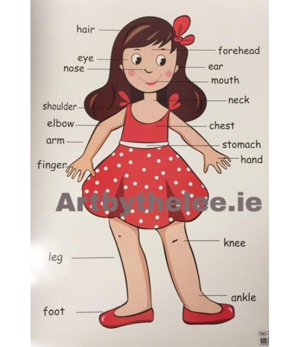 Body Poster(Girl)