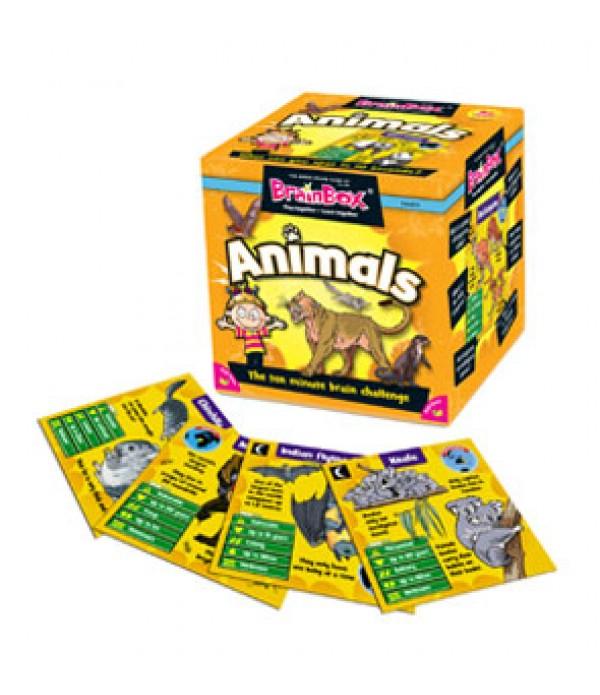 Brain Box Animals