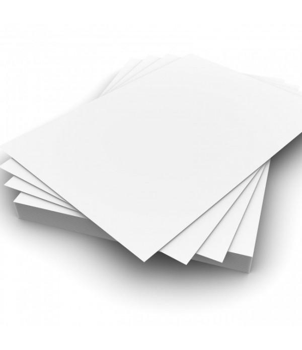 Card A4 White 50s