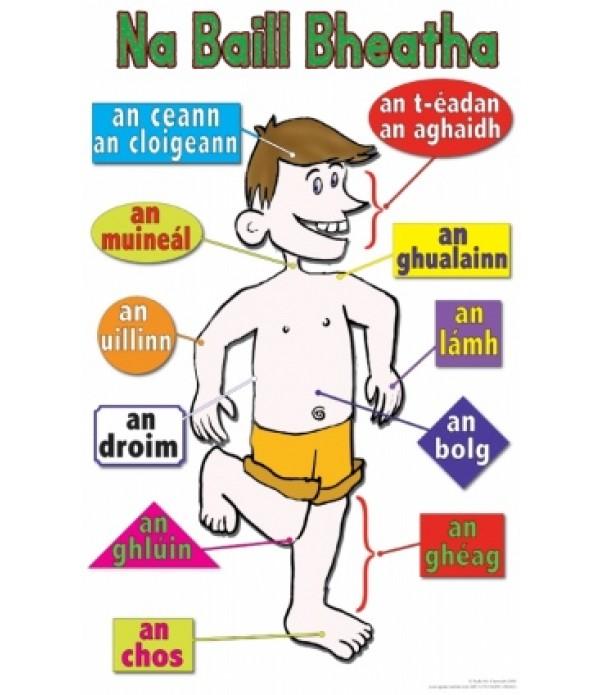 Poster Irish Body 1
